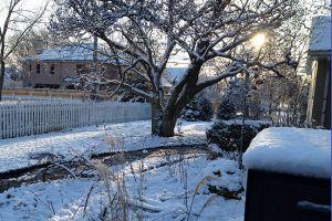 canterbury_winter_farewell.jpg