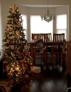 first_jenna_christmas_1.jpg