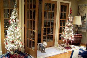 holly_christmas_trees.jpg