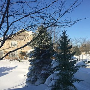 jenna_winter_3.jpg
